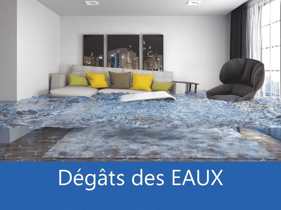expertise humidité 31, expert humidité Toulouse, cause moisissure Toulouse, solutions hulidité Haute-Garonne,